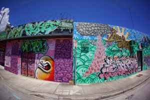Wynwood Wall from the past