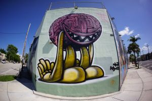 Wynwood-Wall from the past 2.jpg