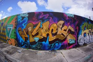 Wynwood-Wall from the past 6.jpg